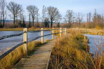 Wanderweg Bovy von Johan Vanbockryck
