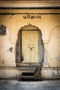 Doors of India van