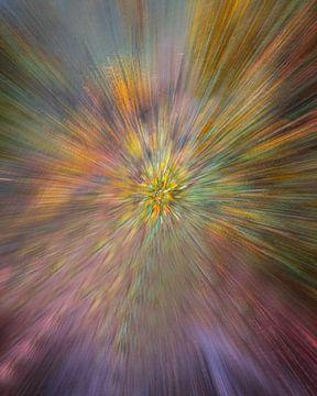 Kleurexplosie! van Karin de Bruin