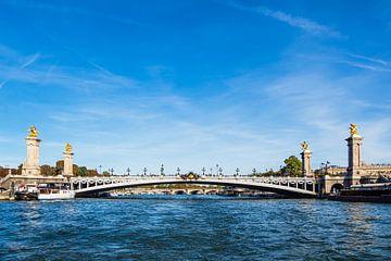 Blick auf die Brücke Pont Alexandre III in Paris, Frankreich sur Rico Ködder