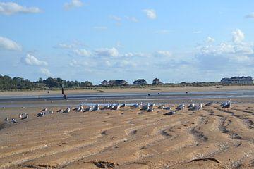 Houlgate, Normandie, Frankreich von Bernard van Zwol