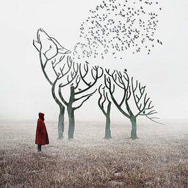 Roodkapje van Elianne van Turennout
