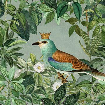 Der Vogelkönig von Andrea Haase