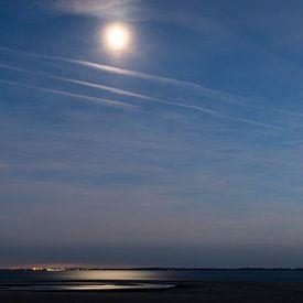 Maanlicht op de Maasvlakte van Danny de Jong
