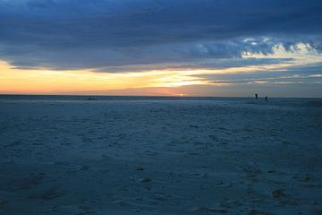 texel's strand van . .