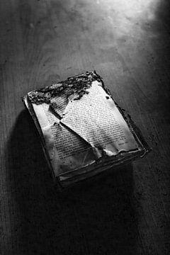 oude bijbel von mandy sakkers