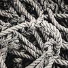 rope von Freddy Hoevers Miniaturansicht