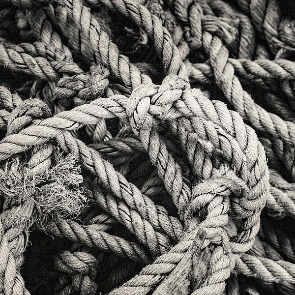 rope von Freddy Hoevers