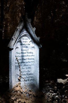 Klimop op grafsteen van Helga Novelli