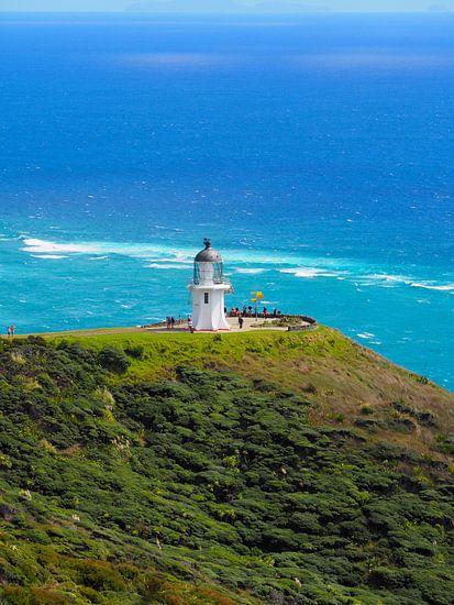 Cape Reinga Nieuw Zeeland