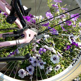 Fietswiel met bloemen op de achtergrond van Adriana Zoon