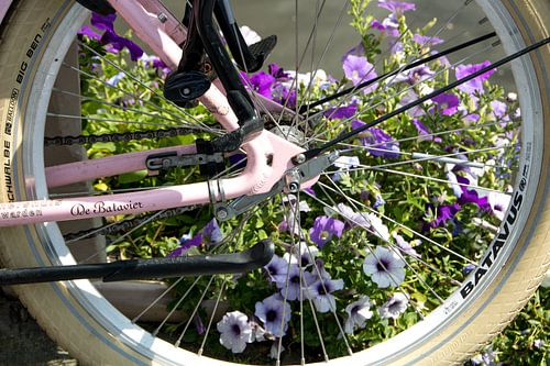 Fietswiel met bloemen op de achtergrond
