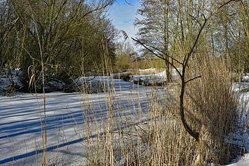 Winterlandschap van Tjamme Vis