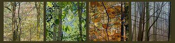 bomen in lente, zomer, herfst en winter van Hanneke Luit