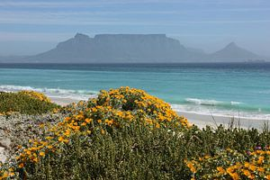 southafrica ... table mountain