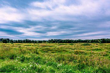Uitzicht bij fort Panerden van David van Coowijk