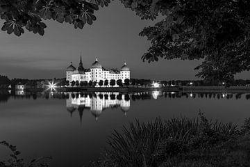 Kasteel Moritzburg (zwart-witfotografie)