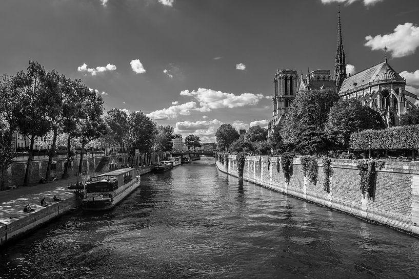 Bij Notre Dame de Paris van Vincent de Moor