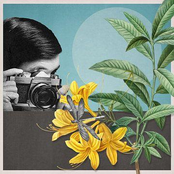 Macro Photography van Marja van den Hurk