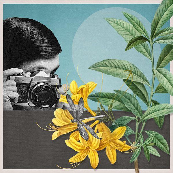 Macro Photography sur Marja van den Hurk
