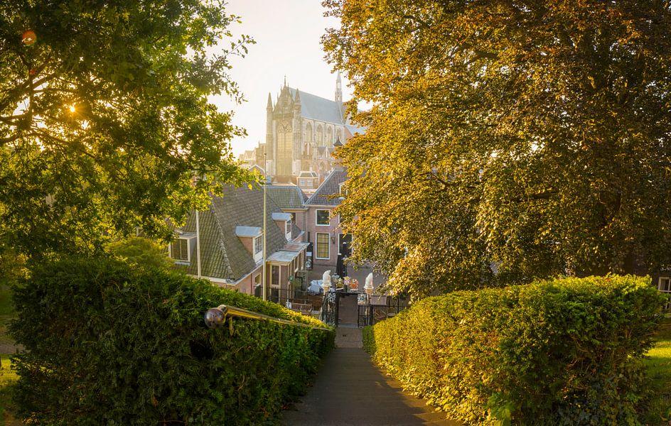 Discover Leiden van Martijn van der Nat