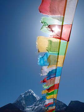 Boeddhistische gebedsvlaggen Himalaya van Menno Boermans