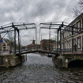 Schiedam. van Tilly Meijer
