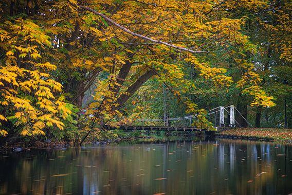Hängebrücke über einen Teich im Park im Herbst