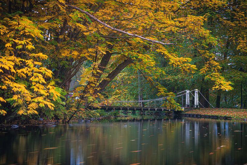 Hangbrug over een vijver in het park in de herfst van Arjan Almekinders