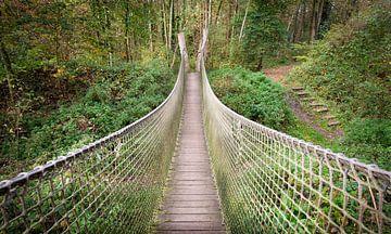Hängebrücke in der Natur von Katrien Buysse
