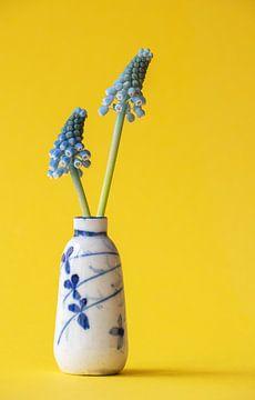 Kleine chinesische antike Vase mit zwei blauen Weintrauben auf gelbem Hintergrund. von Marjolein Hameleers