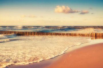 Ich träumte vom Meer von Daniela Beyer