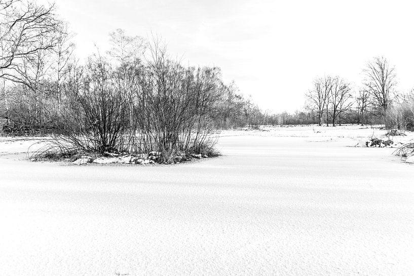 Winter Wonder Landschap van Ratna Bosch