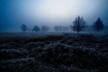 De Spooknacht van Danny Hummel