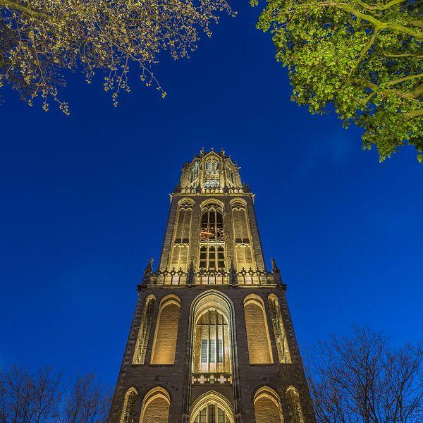 Domtoren Utrecht vanaf het Domplein in de avond - 6 van Tux Photography