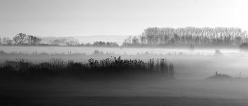 Mistig landschap Oud-Zevenaar von Alina van Lierop