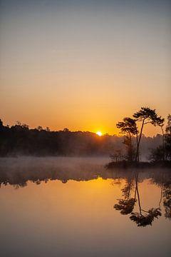 zonsopkomst van Miranda Geerts