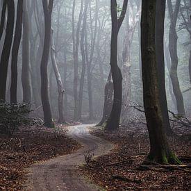 De weg gaat eeuwig door van Tvurk Photography