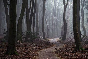 De weg gaat eeuwig door