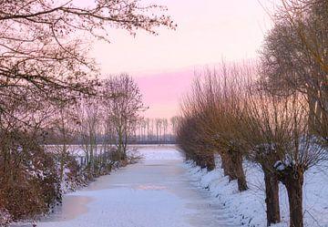 bevroren sloot van Tania Perneel