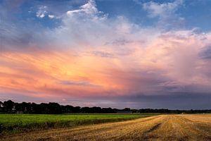 Kleurrijk landschap drenthe