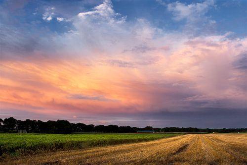 Kleurrijk landschap drenthe van