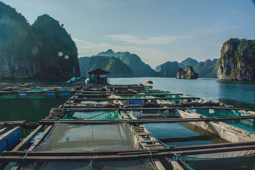 Vissersdorp in Vietnam van Godelieve Luijk