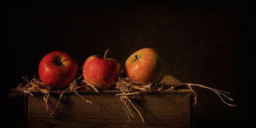 Een appel per dag... van