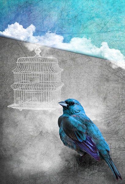 Blue Bird van INA FineArt