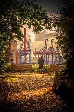 Paar geniet van het uitzicht op de Elbe boven de haven van Hamburg. van Ingo Boelter