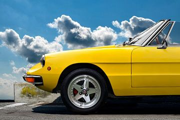 "Alfa Romeo Spider ""Coda Tronca"""