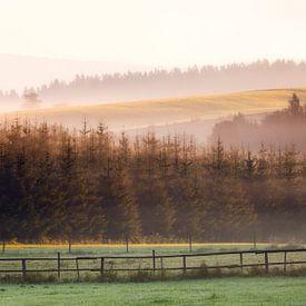 Sauerland Mist, Duitsland van Frank Peters