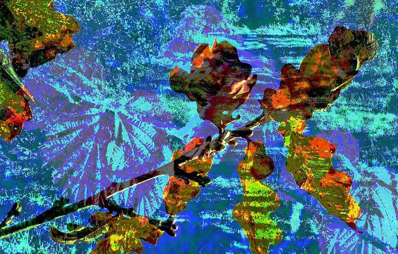 Gekleurd eikenblad van CreaBrig Fotografie