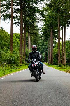 Motorradfahrer auf einer Landstraße von Nynke Altenburg